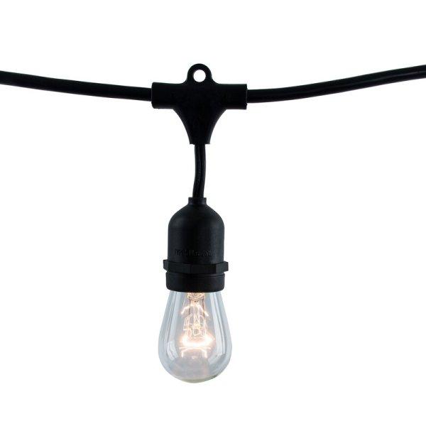 Gracinha 48' Outdoor 15 - Bulb Standard String Light