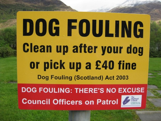 Funny Scotland Signs