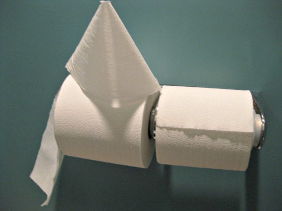 picture of toilet paper
