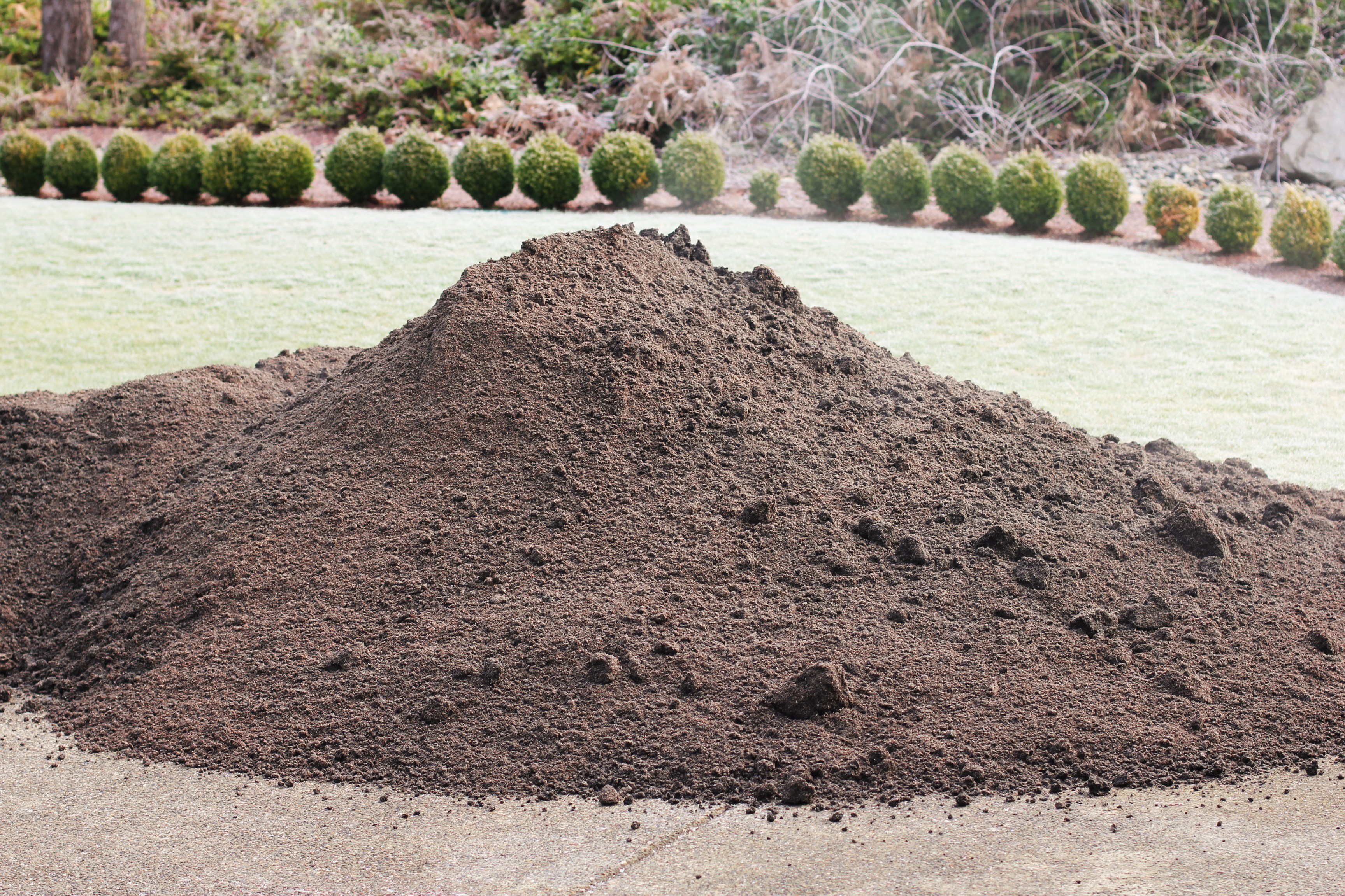 pile of compost