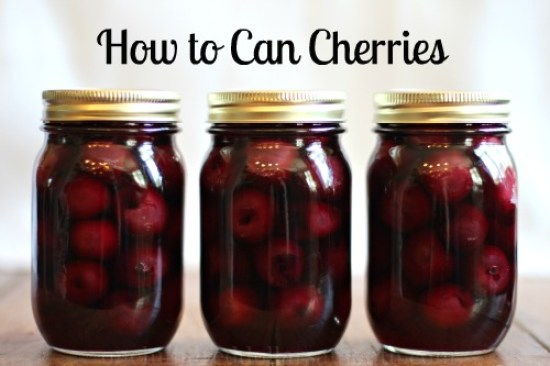 how to can cherries recipe