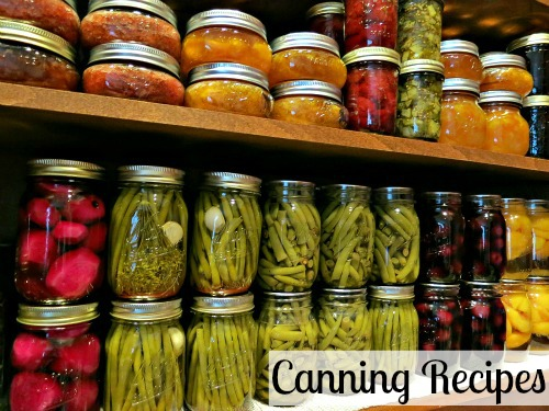 canning 101 amaretto cherries one hundred dollars a month