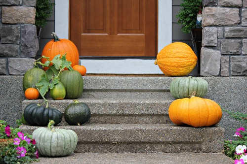 Mavis garden blog picking heirloom pumpkins one for Front porch pantry coupon