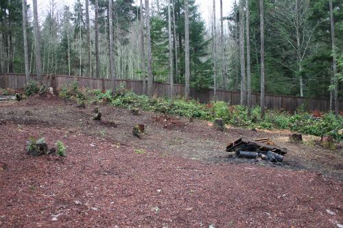 future garden setting plot