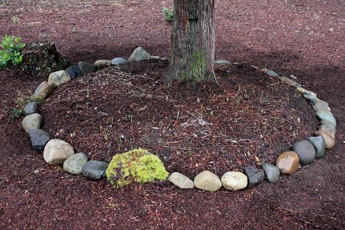 rock border around a tree