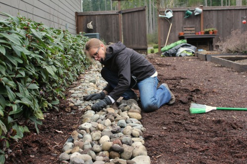 seatle garden blog mavis butterfield
