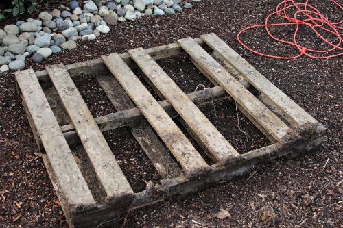 wooden pallet  t