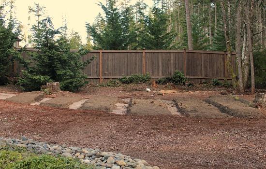 garden wooded backyard