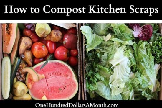 how to compost kitchen scraps