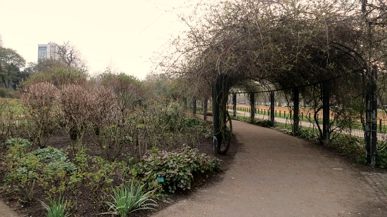 hyde park london arched trellis