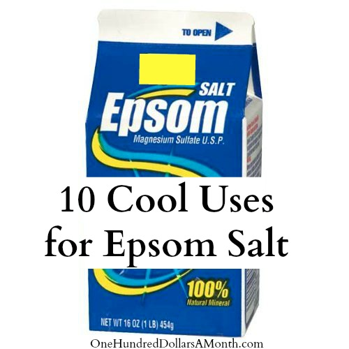 10 cool uses for epson salt