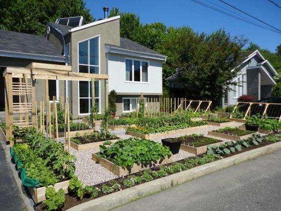 front yard garden - Front Yard Garden
