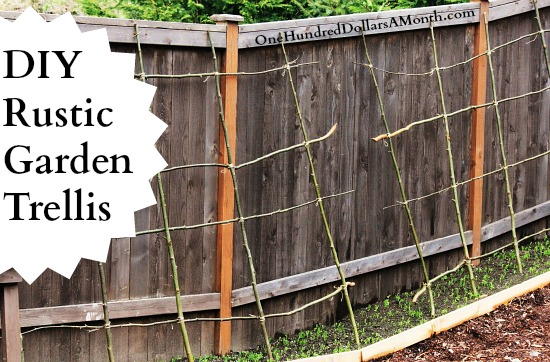 DIY how to make a pea bean trellis