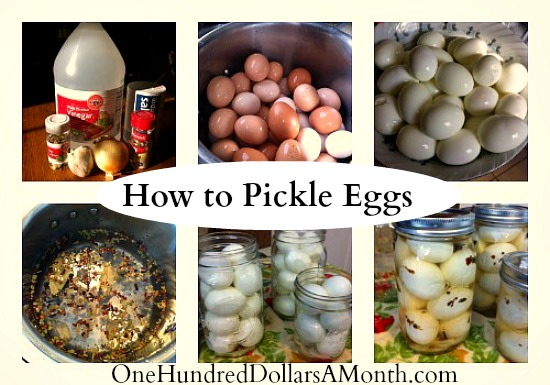how to make pickled eggs