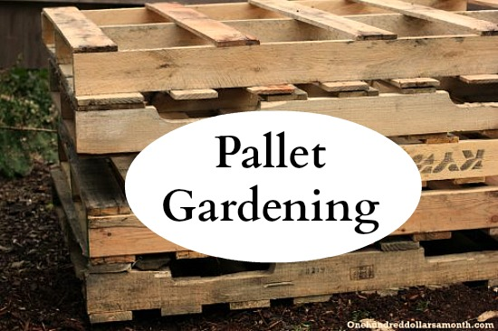 Pallet Gardening 101 Creating A Pallet Garden One Hundred