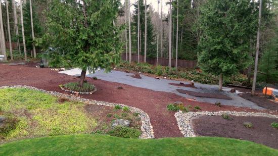 Mavis Butterfield   Backyard Garden Plot Pictures - Week ... on Wooded Backyard Ideas id=84832