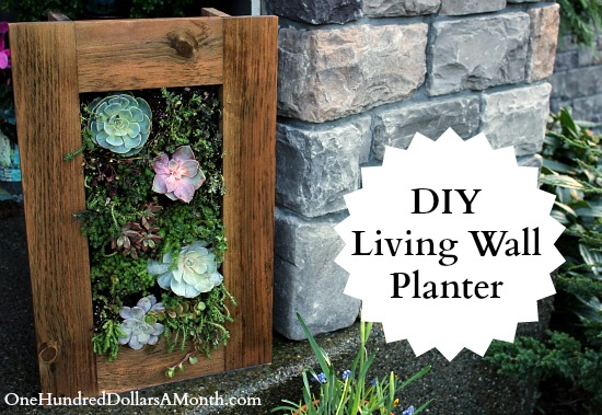 Diy Sedum And Succulent Living Wall Planter One Hundred Dollars A