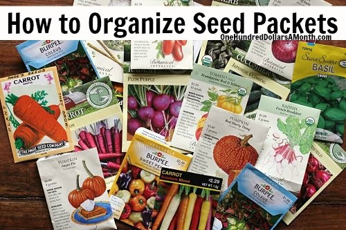 How-to-Organize-Seed-Packets_opt