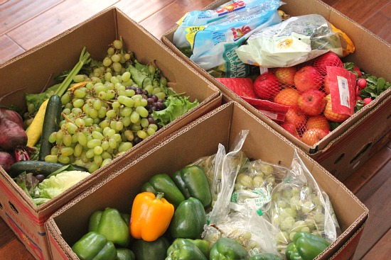 dumpster diving free produce