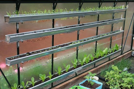 garden grow in gutters