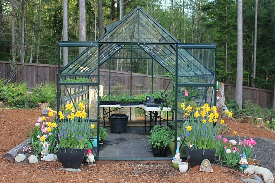 Superior How To Grow Vegetables In A Greenhouse