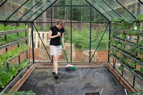 Swell Growing Vegetables In A Greenhouse One Hundred Dollars A Month Download Free Architecture Designs Ogrambritishbridgeorg