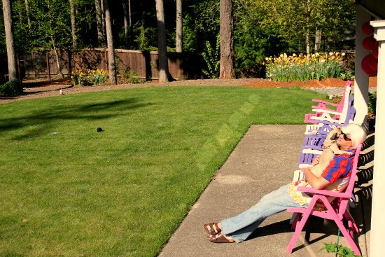 andy spray painted lawn chairs puggle
