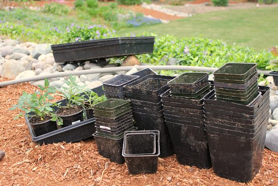 how to find free planting containers