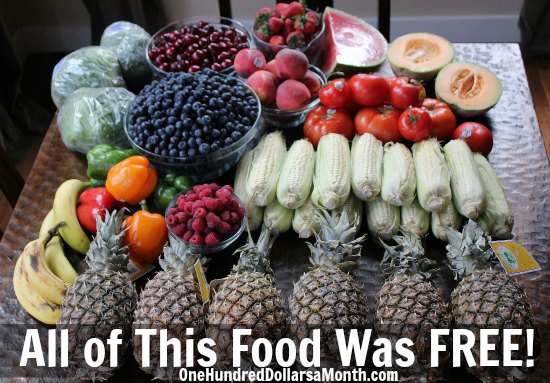 Food-waste-in-America-pictures