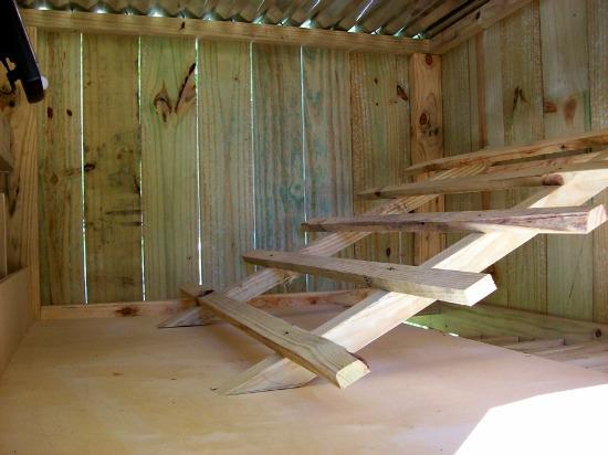 chicken coop ladder