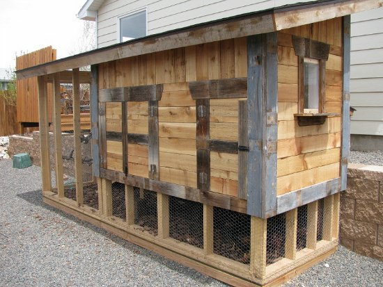 cool chicken coop designs