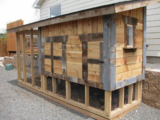 Best Chicken Coop Designs For Cold Weather