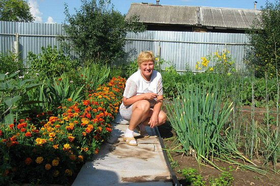 Using Marigolds in the Garden to Control Pests - One Hundred Dollars ...
