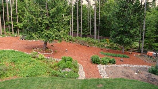wooded backyard red mulch