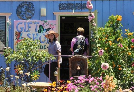 Annie's Annuals and Perennials Online