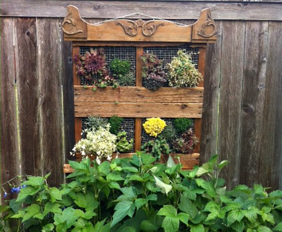 Wood Pallet Garden Ideas With Pictures One Hundred Dollars A Month - Pallet-garden-ideas