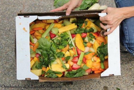 food waste fruit