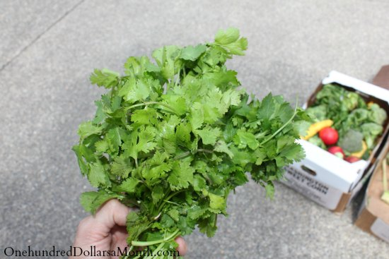 food waste lettuce