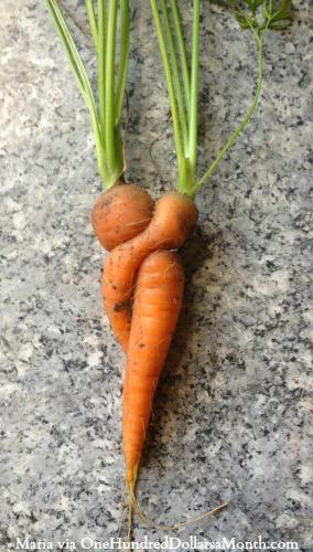 shaped carrots
