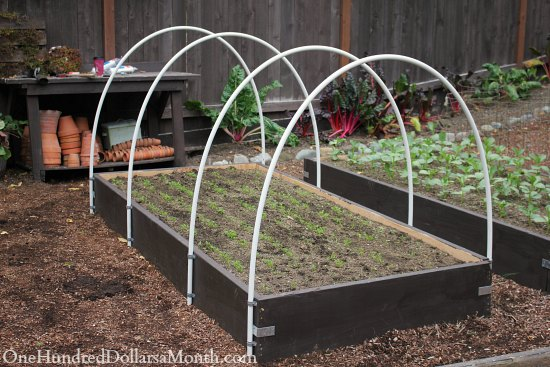 How to Build a Row Cover or Mini Greenhouse Poly Tunnel & How to Build a Small Poly Tunnel - One Hundred Dollars a Month