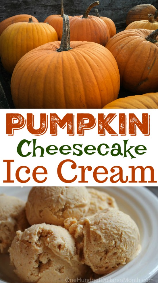 Pumpkin Cheesecake Ice Cream One Hundred Dollars A Month