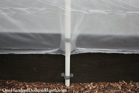 poly tunnel plastic