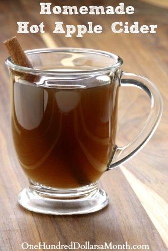Crock Pot Hot Apple Cider Recipe