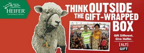 heifer-international-gift-box-christmas