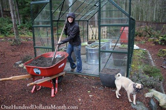 glass greenhouse garden