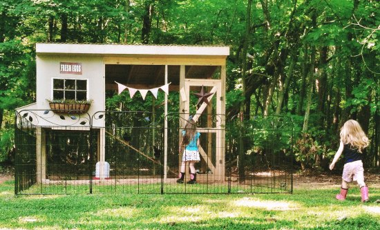 handmade chicken coop