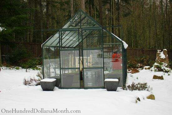 winter greenhouse snow