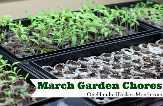 march garden chores