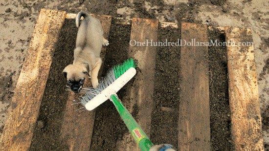 pallet-garden-DIY