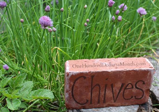 DIY Garden Markers Using Bricks - One Hundred Dollars a Month